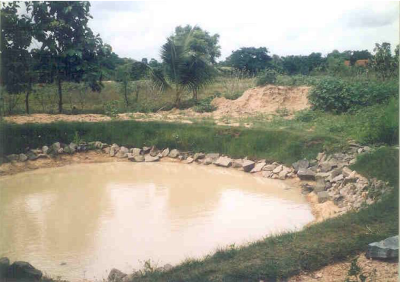 Water storage in a pond.png