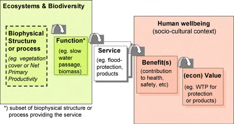 Framework for linking ecosystems to human well-being.png