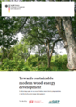 Towards sustainable modern wood energy development.PNG