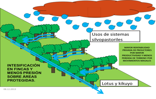 Agroforestry system in mountainside farms.png