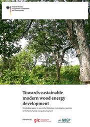 https://wocatpedia.net/wiki/File:Report_Wood-energy_aktuell_26-03-15.pdf
