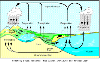 The hydrological cycle.png