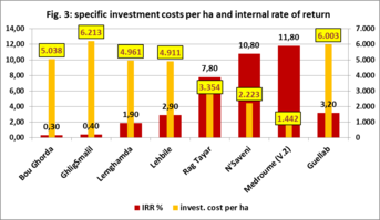 Specific investment costs per ha and internal rate of return.png