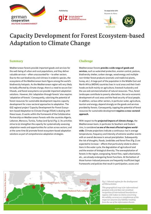 File:CCA GIZ Best Practices (2) Forest Policy.pdf