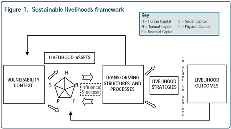 Sustainable livelihoods framework.png
